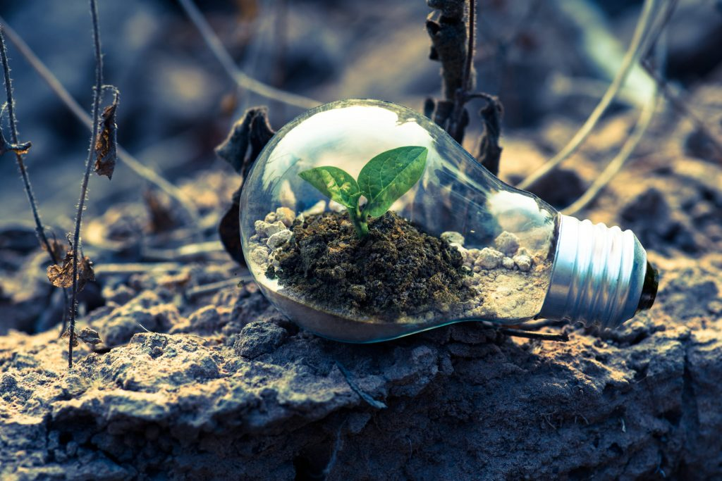 environment is critical lightbulb grow change important